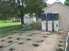 The Rainbarrel Man The Landscape Drip Irrigation Kit